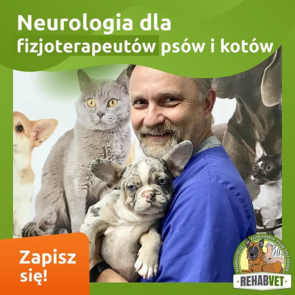 Neurologia dla fizjoterapeutów psów i kotów
