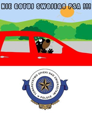 Nie zamykaj psa w samochodzie